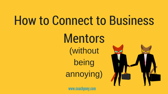 How to find business mentors